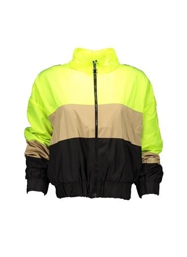 Collezione Yağmurluk Sarı